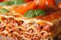 Tasty lasagna with basil and tomatoes macro horizontal