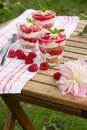 Tasty raspberry cheesecake in glass fresh summer dessert Stock Images