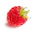 Tasty raspberry fruit Stock Photography