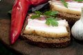 Tasty sandwich with salted lard salo pork garlic and pepper traditional ukrainian cuisine Stock Image