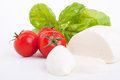 Tasty tomatoe mozzarella salad with basil on white Royalty Free Stock Images