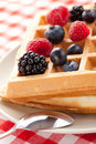 Tasty waffle with fruits Royalty Free Stock Photo