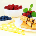 Tasty waffles with summery fruits Stock Images