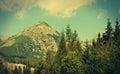 Tatra mountains near strbske pleso slovakia photo with vintage effect Stock Photography