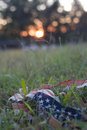 Tattered flag at sundown Stock Image