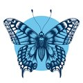 Tattoo butterfly in blue circle for your forearm. Symbol of immortality and transformation. Boho style Royalty Free Stock Photo