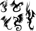 Tattoo dragons Royalty Free Stock Image