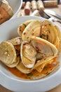 Tuatua Clam shell Royalty Free Stock Photo