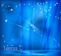 Taurus Zodiac Background Royaltyfri Bild