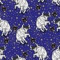 Taurus zodiac sign,constellation, stars.Horoscope Royalty Free Stock Photo