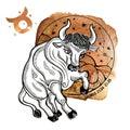 Taurus zodiac sign.Horoscope circle.Watercolor Royalty Free Stock Photo