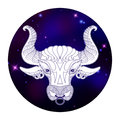 Taurus zodiac sign, horoscope symbol, vector illustration Royalty Free Stock Photo