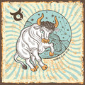 Taurus zodiac sign.Vintage Horoscope card Royalty Free Stock Photo
