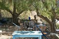 Tavern at the beach extraordinary from lentas on crete Stock Photography