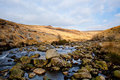 Tavy Cleave Royalty Free Stock Photography