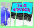 Tax Advice Piggy Bank Shows Professional Advising On  Taxation Royalty Free Stock Photo