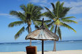 Tax haven stand sun sea palm beach chair so one imagines a Stock Photography