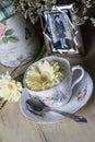 Tazza da the antico e fotografia incorniciata con daisy flowers gialla Immagini Stock