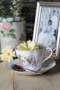 Tazza da the antico e giallo daisy flower e vecchia fotografia Immagini Stock Libere da Diritti