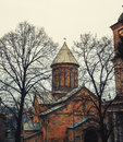 Tbilisi georgia with beautiful church in spring behind the trees toned photo Stock Photography