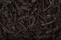 Tea background black leaves texture Royalty Free Stock Photos