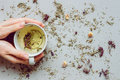 Tea background. Hands holding cup of hot tea. Dry herbal tea on the gray background, top view. Copy space Royalty Free Stock Photo