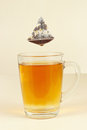Tea bags over glass with freshly brewed tea the Royalty Free Stock Image