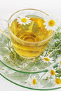 Tea of chamomile drug herbal healing drink Royalty Free Stock Images