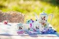 Tea crockery in the garden Royalty Free Stock Photo