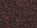 Tea crop Royalty Free Stock Photo
