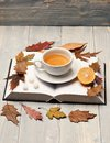 Tea cup on blank book pages and leaves. Hot beverage Royalty Free Stock Photo