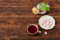 Tea Cup and Plate Of Fine Bone China. Sweets Royalty Free Stock Photo
