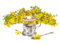 Tea a cup of st john s with fresh flowers on a white background Royalty Free Stock Photography