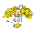 Tea a cup of st john s with fresh flowers on a white background Stock Images