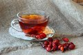 Tea with dogrose cup of from the hips and dry rosehips Royalty Free Stock Photography