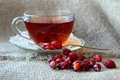 Tea with dogrose cup of from the hips and dry rosehips Royalty Free Stock Photo