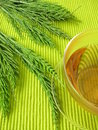 Tea with field horsetail Stock Photography