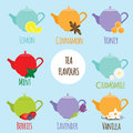 Tea flavours types different tastes and vector illustration of colorful teapots and berries mint lemon and other Stock Images