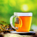 Tea green background healthy with many herbal colorful soft Stock Photography