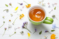 Picture : Tea Herbal Green Cup Flowers
