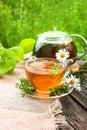Tea with healing daisy Royalty Free Stock Photo