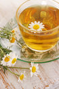 Tea for health herbal of chamomile drug healing drink Royalty Free Stock Images