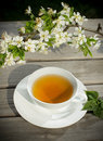 Tea of healthy herb