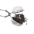 Tea infuser isolated on white background metallic sample text Stock Photography