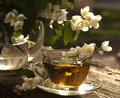 Tea and jasmine Stock Photo