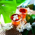Tea with jasmine. Two cups of tea on a natural background of gre Royalty Free Stock Photo