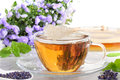 Tea of lavender before bellflower Stock Photography