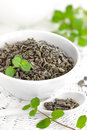 Tea with mint and fresh twigs Royalty Free Stock Photo
