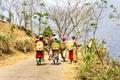 Tea pickers of darjeeling Royalty Free Stock Photo