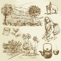 Tea plantations hand drawn set Royalty Free Stock Photography